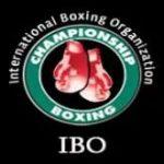 IBO - пятая по значимости профессиональная Международная боксерская организация, основанная в 1988 году