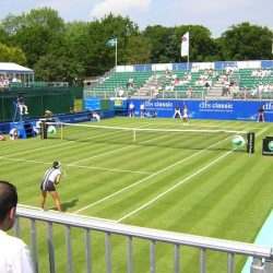Теннис WTA 1/4 финала. Трансляция из Бирмингема 23.06.2017